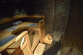 Sauna (uusittu 20100)