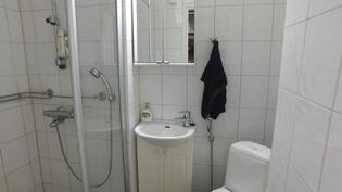 Siisti ja kätevä kylpyhuone