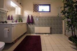 Erillinen wc, jossa myös suihku
