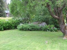 Kesäinen puutarha