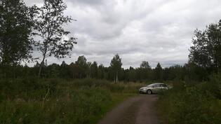 Kuva on otettu jokirannasta ja metsämaa alkaa auton takaa