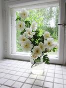 ikkunasyvennyksestä näkee seinän vahvuuden