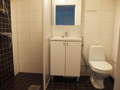 Pesuhuone / wc
