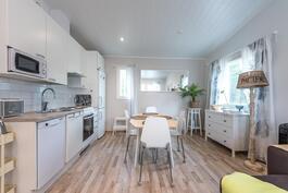 Sivuasunnossa keittiö, ruokailutila ja olohuone yhtenäistä tilaa.