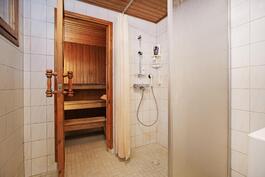 Pesuhuone ja sauna alakerrassa