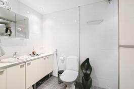 Alakerran kylpyhuone. Oikealla liukuoviseinän takana tila pyykkihuollolle sekä suihku.