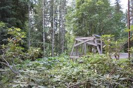 Puhdas luonto ympärillä lenkkipolkuineen hiihtolatuineen