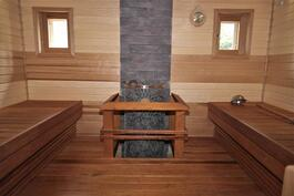 tunnelmallinen sauna musiikkijärjestelmineen