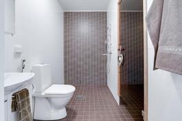 Pesuhuone, jossa toinen wc