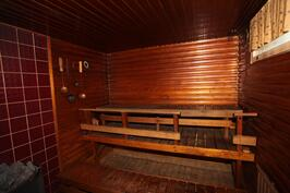 sauna, jossa suihku ja pesutila