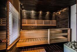 Talon sauna (myös puukiuas)