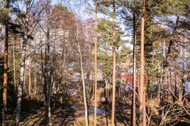 Näkymä asunnosta F8, tontin puut kaadetaan.