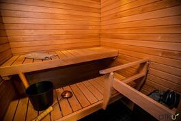 Tässä saunassa nautitaan leppoisista löylyistä