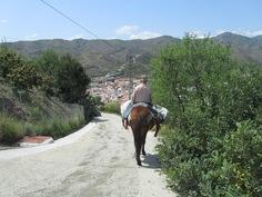 kylän ympärillä on hienot kävelyreitit