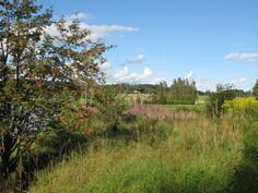 Naapurin pellon takana pilkottaa kyläyhdistyksen ylläpitämä elintarvikekioski Pumppaamo.