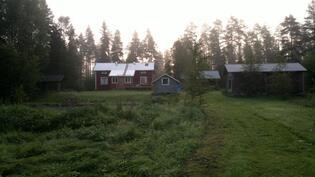 Kuva järveltäpäin kesäaamuna.