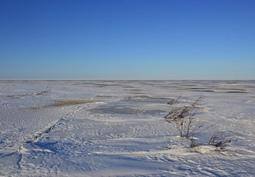 meren jäällä on hyvä hiihtää