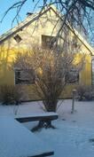 Talon puutarhan puoleinen pääty talviasussa