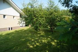Pihalla tilaa temmeltää tammien ja hedelmäpuiden keskellä.