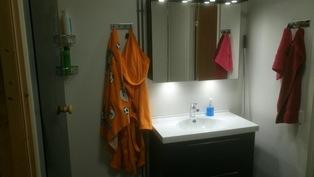 2017 remontoitu kylpyhuone, erikoisvalaistu peilikaappi