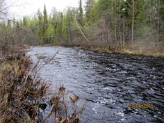 Tainionjoki