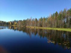 Naarminjärven rantaa