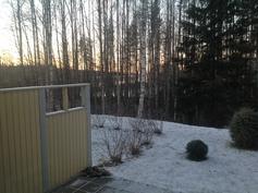 Talvimaisemat takapihalta
