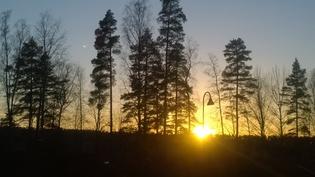 Ilta-aurinkoa keittiön ikkunasta