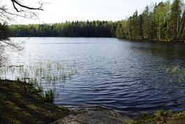 Järvi lähellä
