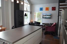 Keittiön työtaso ja olohuone