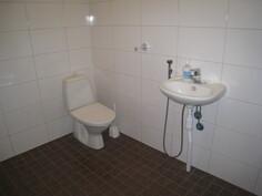 Kylpyhuoneessa on wc ja lavuaari.