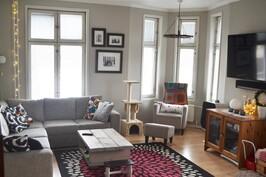 Kahteen suuntaan avautuvat ikkunat sekä huonekorkeus tekevät olohuoneesta erityisen valoisan