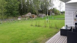 Takapihaa