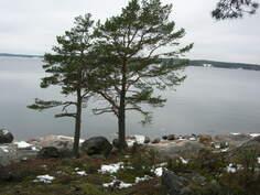 rantanäkymä