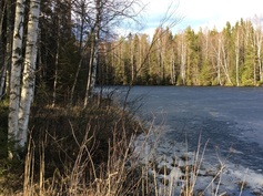 Hallamijärvi