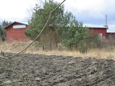 Tontilla on rauhallinen ympäristö: peltoa, taimikkoa, metsää.