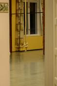 käsinvahattu harrastetilan lattia