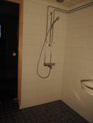 Kylpyhuonetta. Saunan ovi.