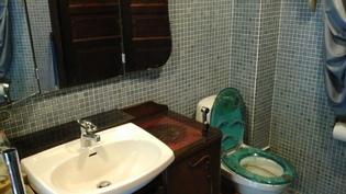 Alakerran kylpyhuone+wc
