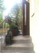 Sisäänkäynti toimii pikku puutarhana.