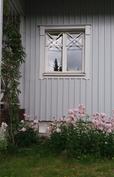 Keittiön ikkunan alla kukkii vaaleanpunaiset perennat