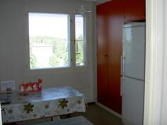 näkymä keittiön ovelta ikkunaseinälle päin