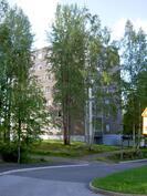 näkymä talosta parkkipaikan tiemutkasta kuvattuna
