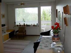 näkymä olohuoneen ikkunaseinälle ja parvekkeelle päin
