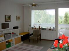 näkymä olohuoneen ikkunaseinälle ja takaseinälle päin