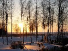 Talvinäkymää.
