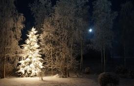 Talven rauhallista loistoa.