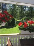 Kesäinen näkymä terassilta
