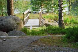 Saunamökin edustalla oleva pieni saari, jonne pääsee siltaa pitkin.