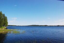 Näkymää järvelle päin